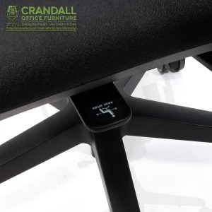 Crandall Office Furniture Remanufactured Steelcase 482 Amia Office Chair with 12 Year Warranty 0007
